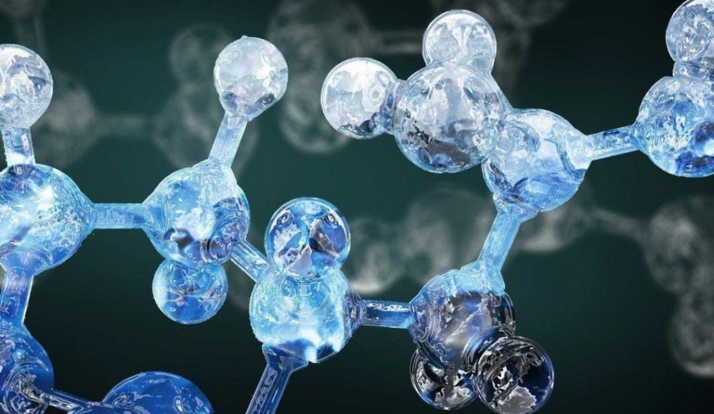 Аминокиселини и протеини — какво да изберем?